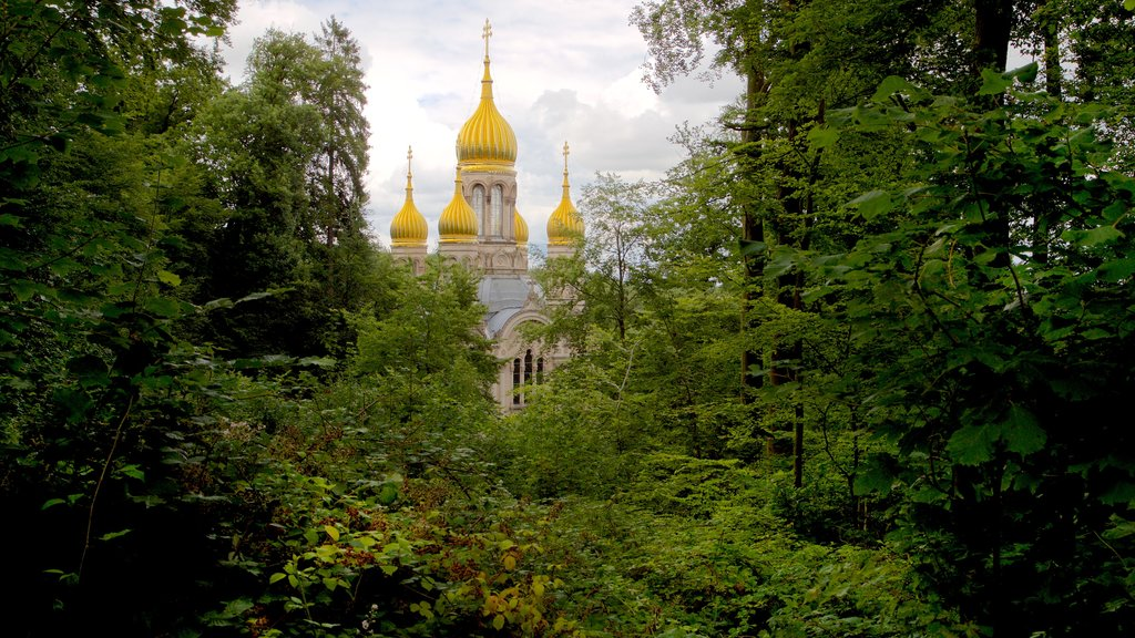 Russian Orthodox Church featuring forests, a church or cathedral and heritage architecture