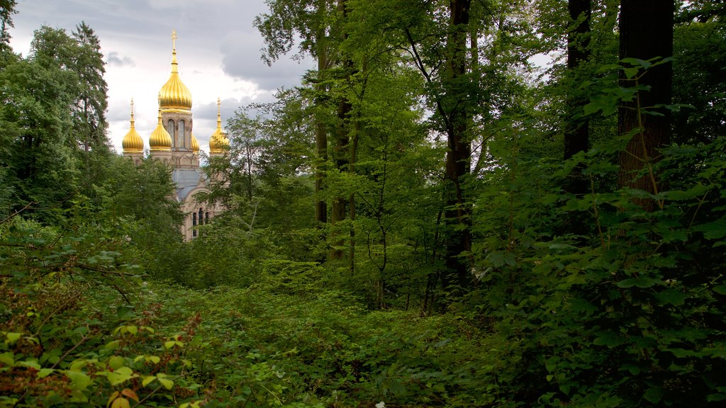 Russian Orthodox Church showing a church or cathedral, forests and heritage architecture