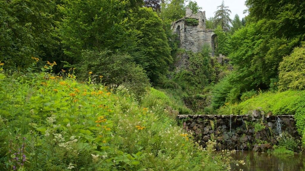 Bergpark Wilhelmshoehe showing a river or creek and wildflowers