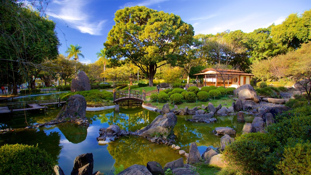 Japanese Garden showing a pond and a park