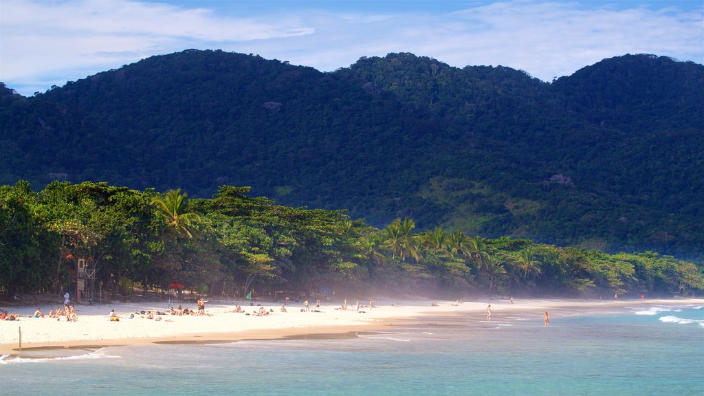 Lopes Mendes Beach showing general coastal views, tropical scenes and a sandy beach
