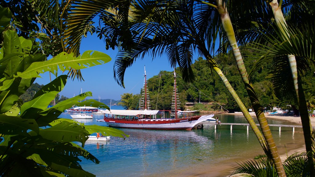 Bonfim Beach featuring a bay or harbor and a sandy beach