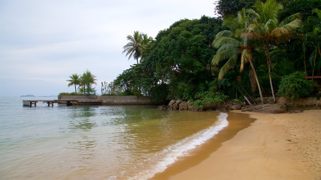 Biscaia Beach which includes tropical scenes, general coastal views and a sandy beach