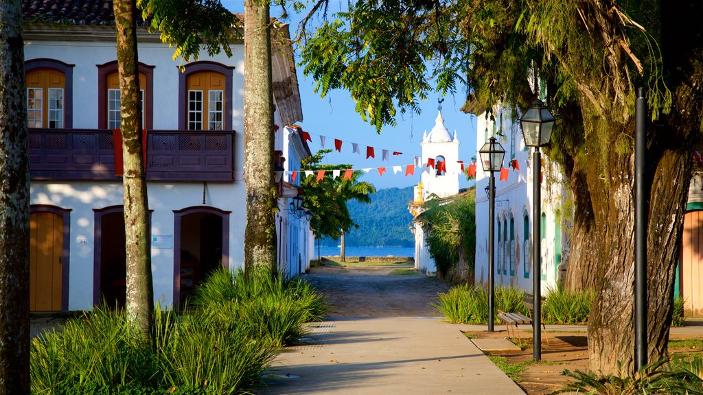 Paraty showing a small town or village