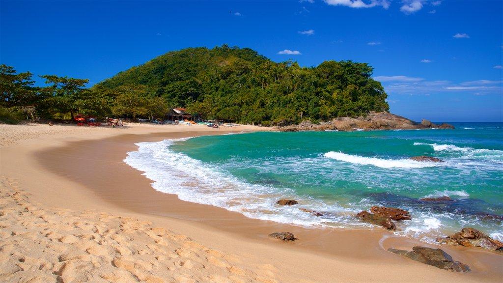 Meio Beach which includes general coastal views and a beach