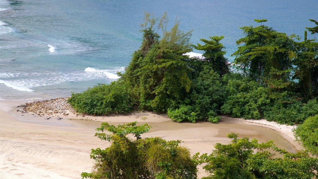 Brava Beach showing a sandy beach and general coastal views