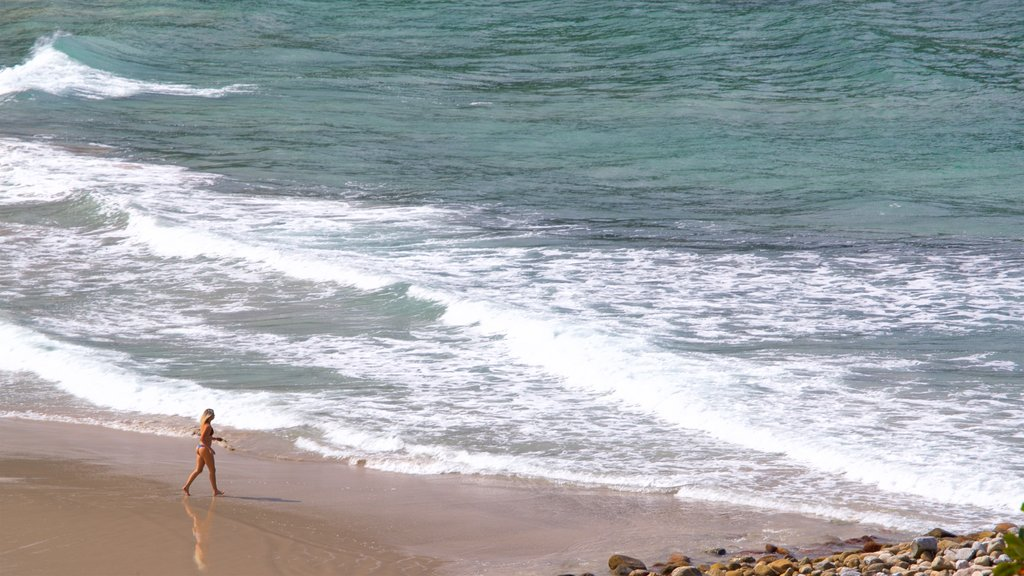 Brava Beach which includes general coastal views and a beach as well as an individual femail
