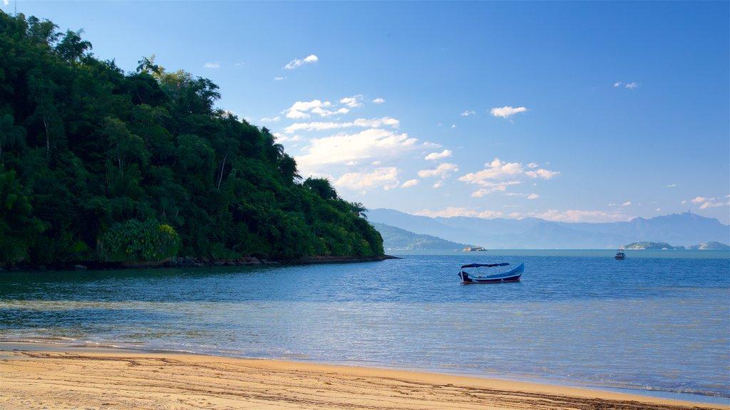 Pontal Beach which includes general coastal views and a sandy beach