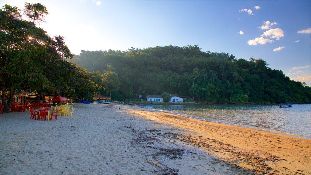 Pontal Beach which includes general coastal views and a beach