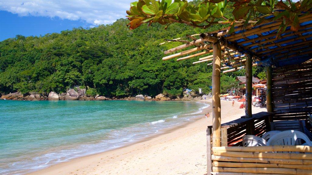 Ranch Beach which includes a coastal town, general coastal views and a sandy beach
