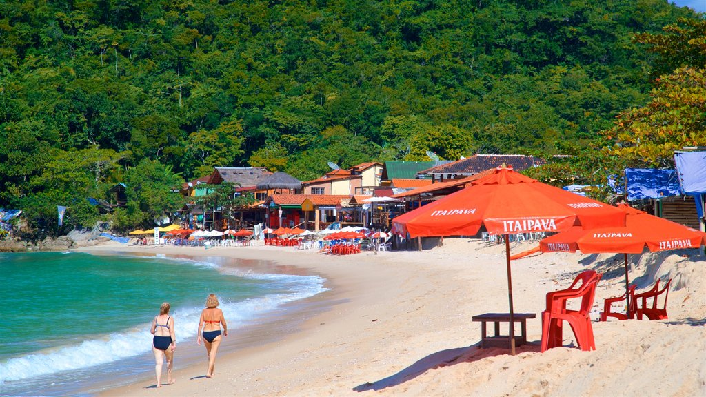 Ranch Beach featuring tropical scenes, a coastal town and a sandy beach