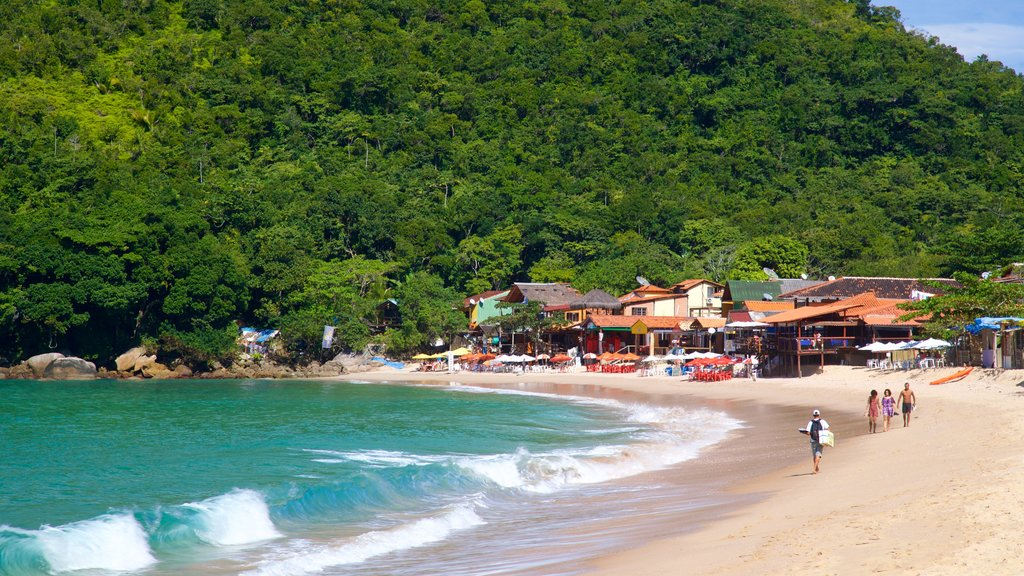 Ranch Beach featuring tropical scenes, general coastal views and a coastal town