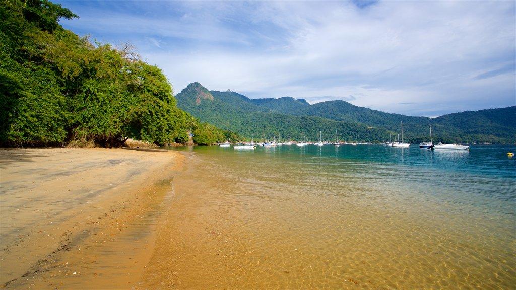 Praia de Japariz mostrando uma praia, paisagens litorâneas e uma baía ou porto