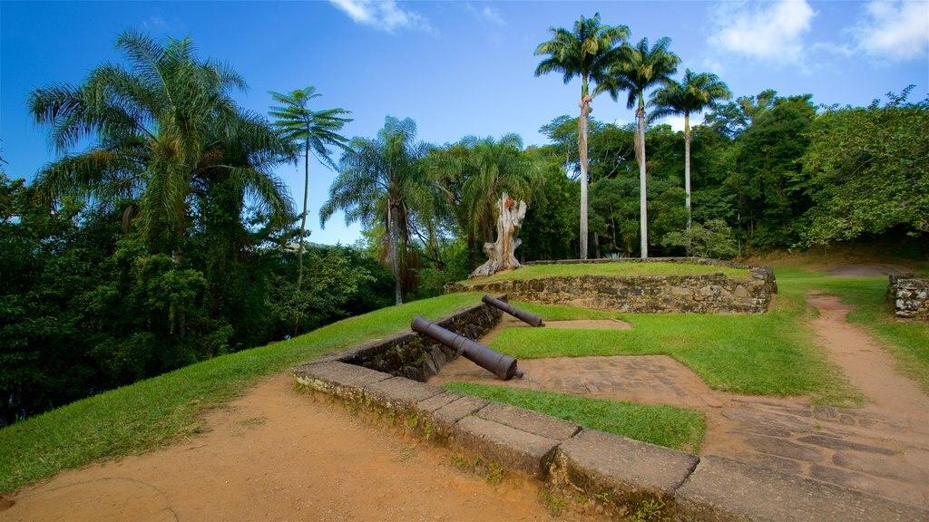 Museo Fuerte Defensor Perpetuo que incluye elementos del patrimonio, artículos militares y un jardín