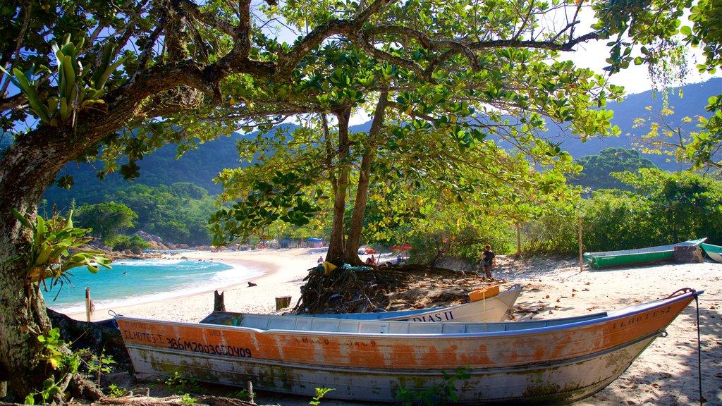 Meio Beach showing tropical scenes, general coastal views and a sandy beach
