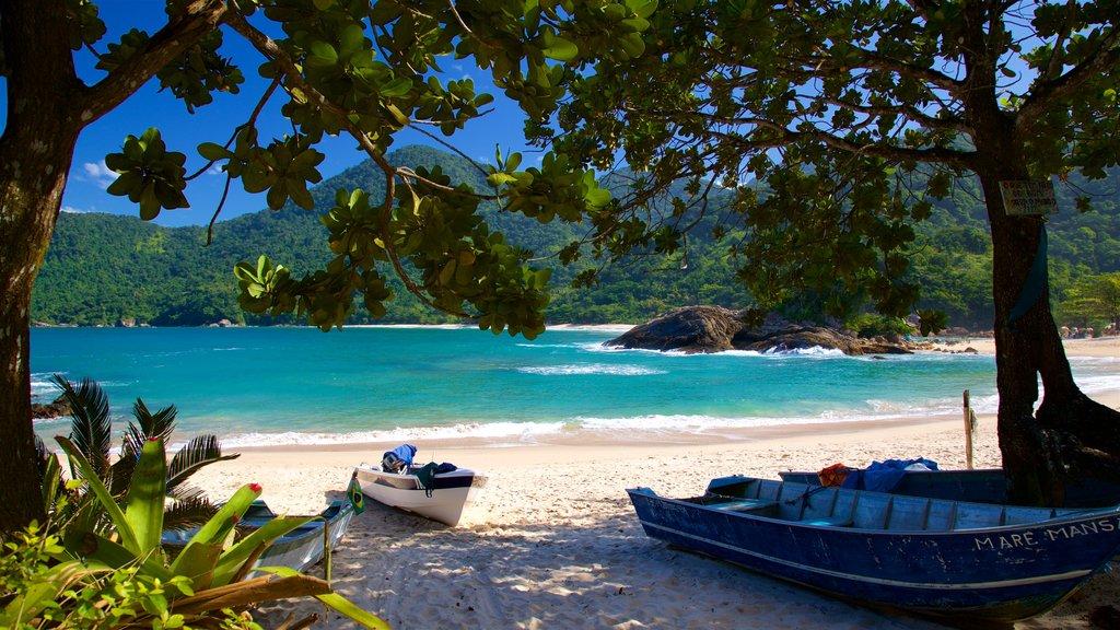 Meio Beach which includes general coastal views, a beach and tropical scenes