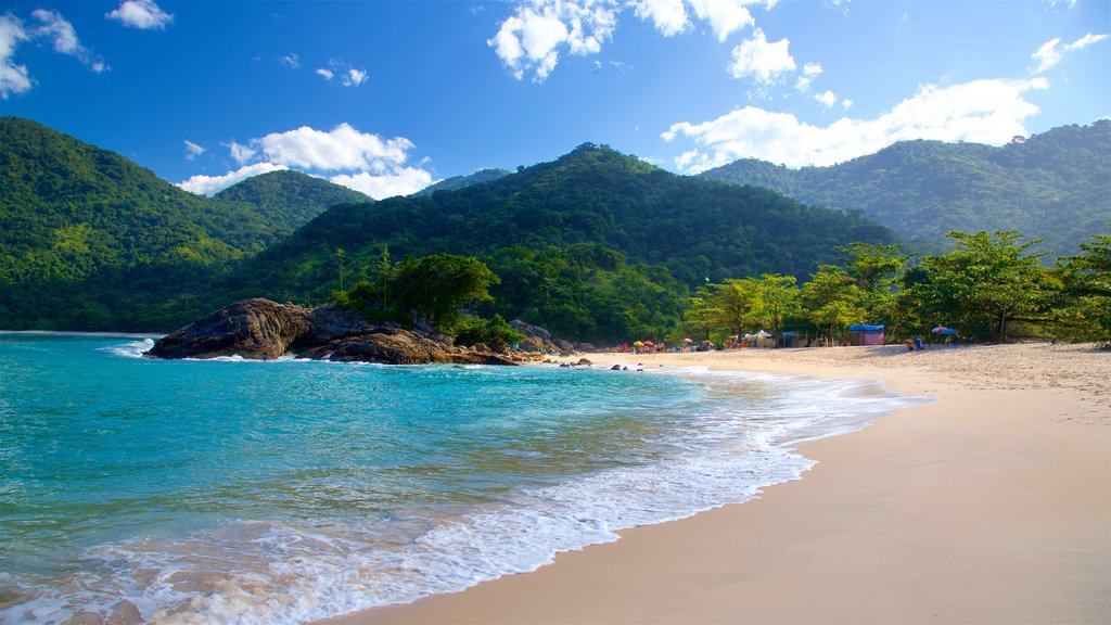 Meio Beach showing tropical scenes, a beach and general coastal views