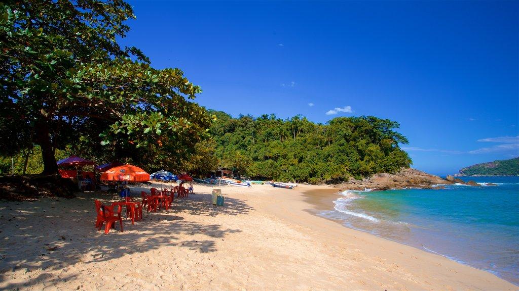 Meio Beach which includes general coastal views, a sandy beach and tropical scenes
