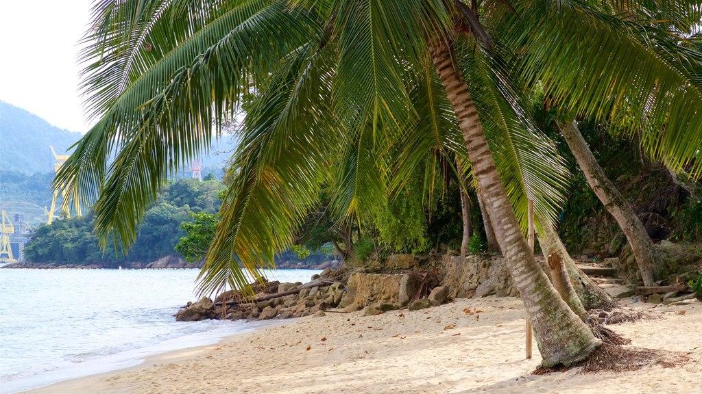 Eguas Beach which includes general coastal views, a sandy beach and tropical scenes