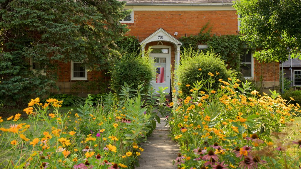 Amana Colonies which includes a house and wildflowers