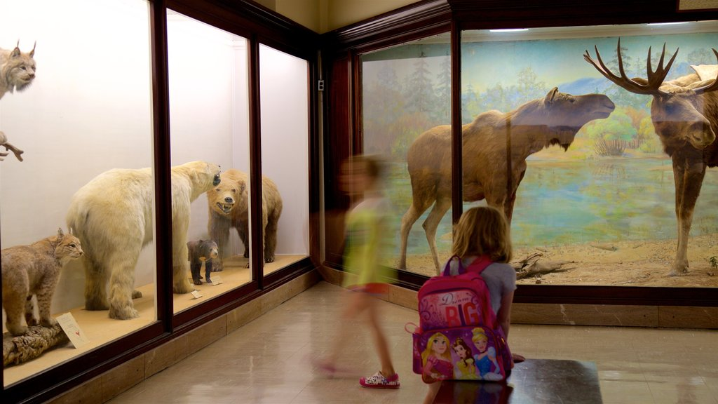 Iowa Museum of Natural History showing interior views as well as children