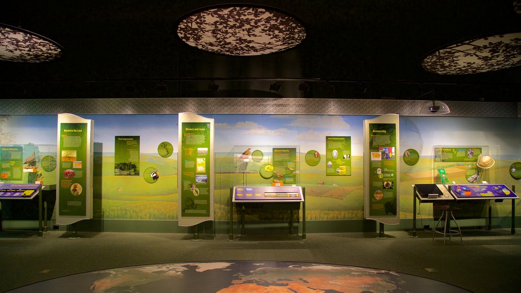 Iowa Museum of Natural History featuring interior views