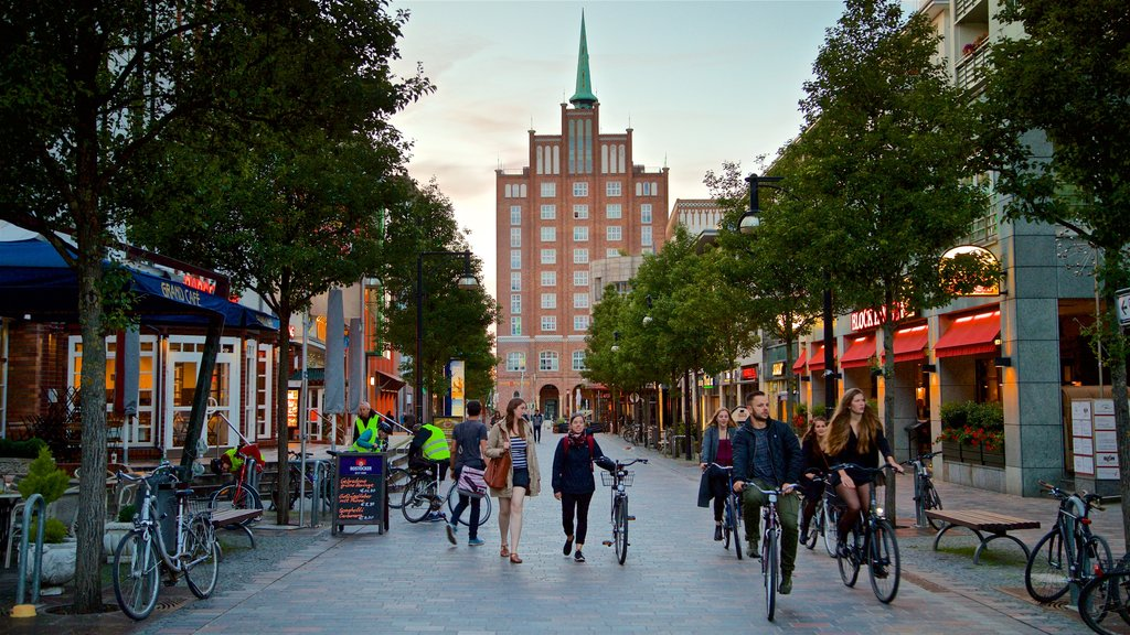 Rostock featuring street scenes, a city and cycling