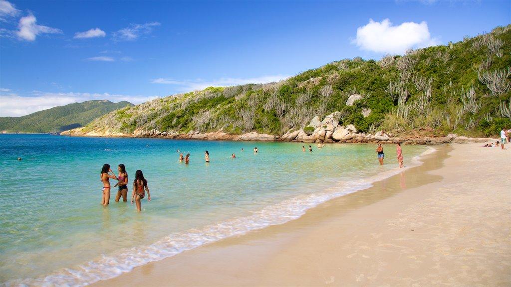 Forno Beach showing swimming, general coastal views and a sandy beach