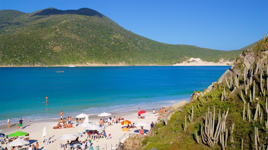 Pontal do Atalaia Beach featuring general coastal views and a beach as well as a small group of people