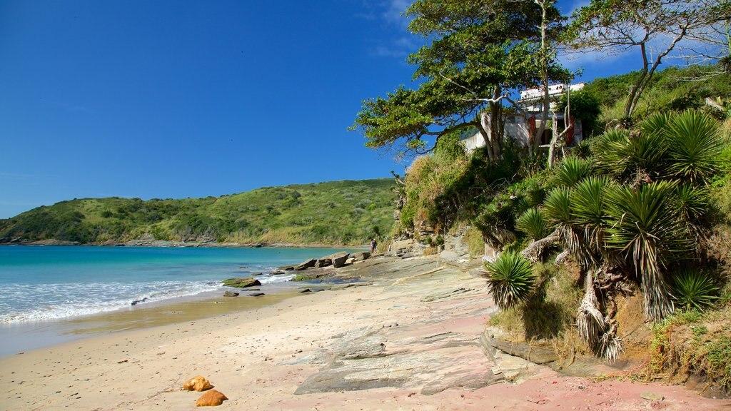 Brava Beach featuring a sandy beach and general coastal views