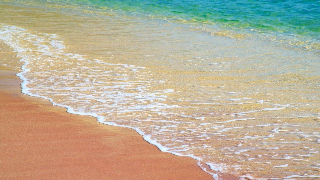 Joao Fernandes Beach featuring a beach and general coastal views