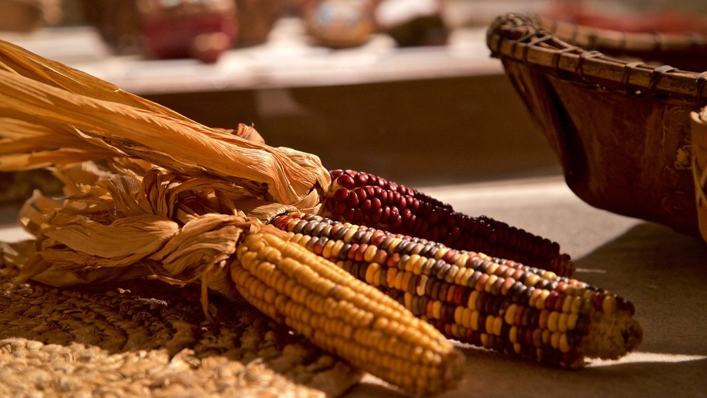 Sainte Marie among the Iroquois featuring food