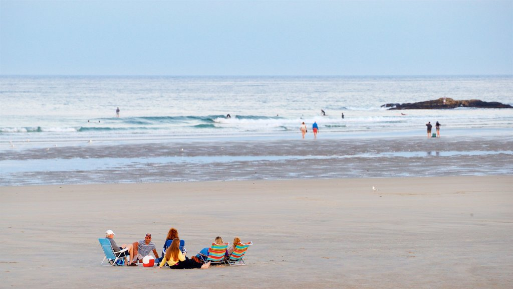 Ogunquit Beach showing general coastal views and a beach as well as a small group of people
