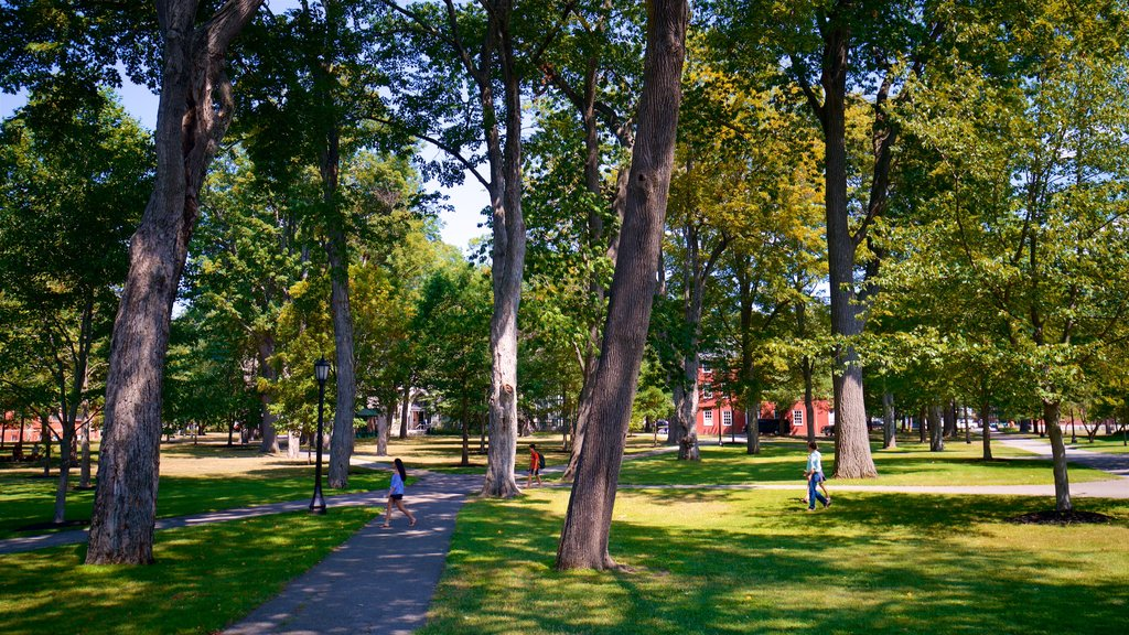 Bowdoin College featuring a park as well as a small group of people