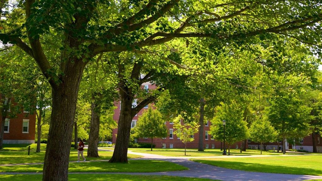 Bowdoin College featuring a park