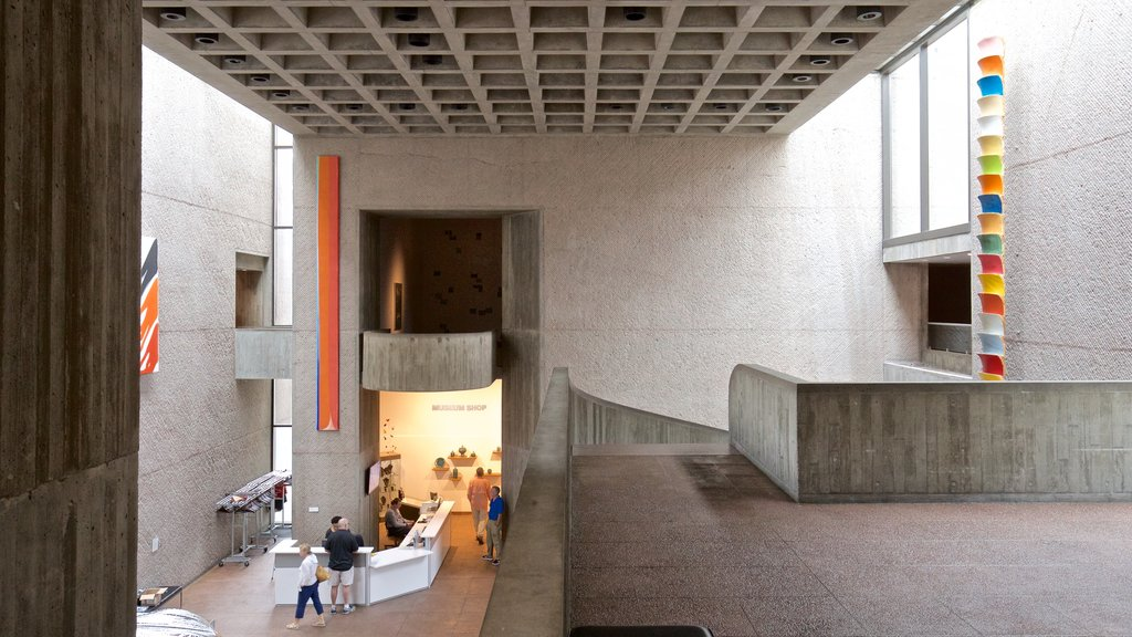 Everson Museum of Art showing interior views and art