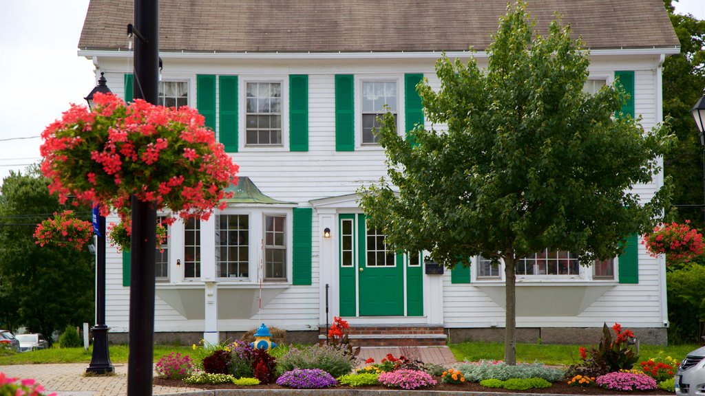 Kennebunk showing wildflowers, flowers and a house