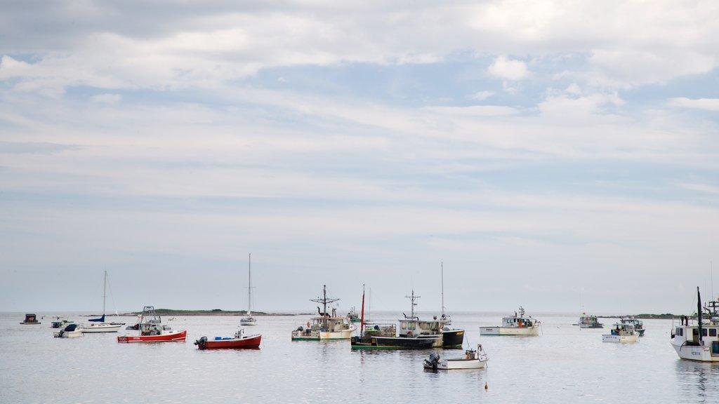 Cape Porpoise mostrando vistas generales de la costa y una bahía o puerto