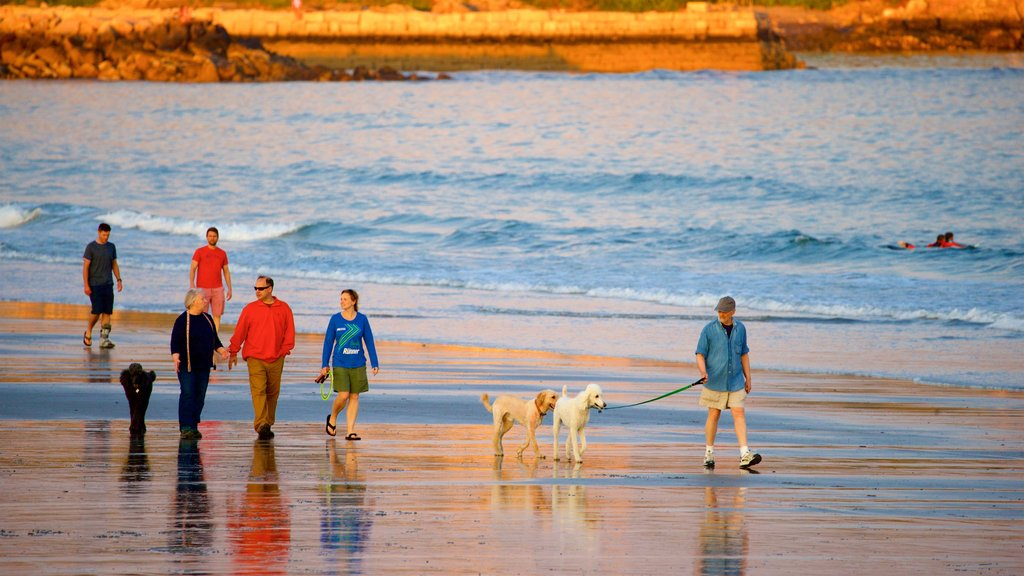 Gooch\'s Beach which includes a beach, general coastal views and rugged coastline