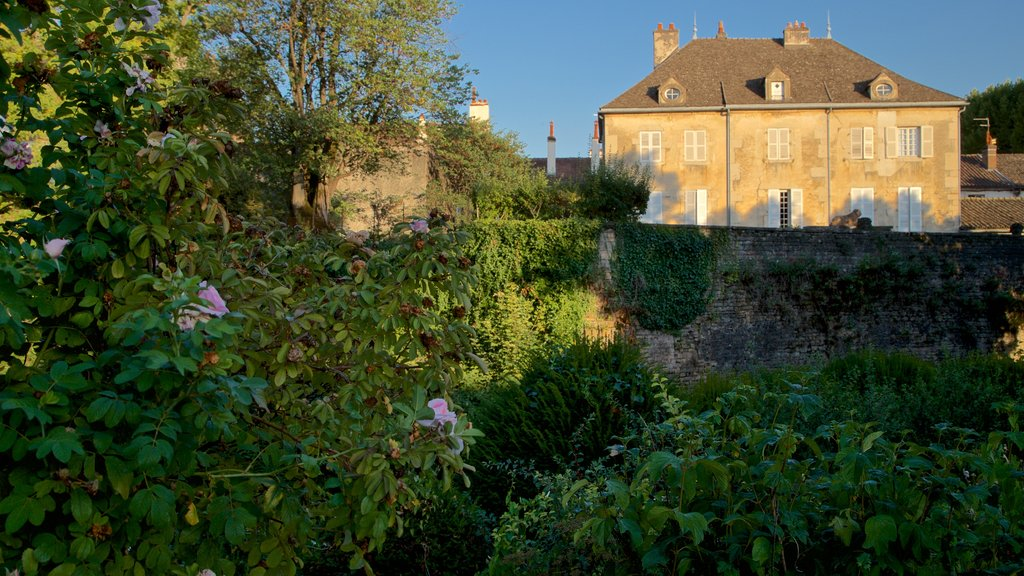 Beaune which includes wildflowers