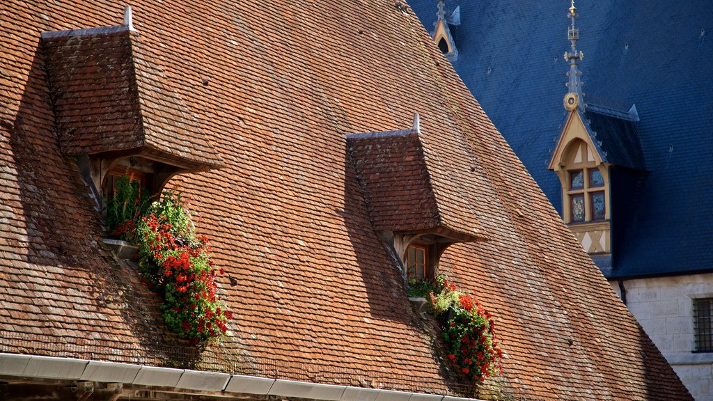 Beaune which includes flowers