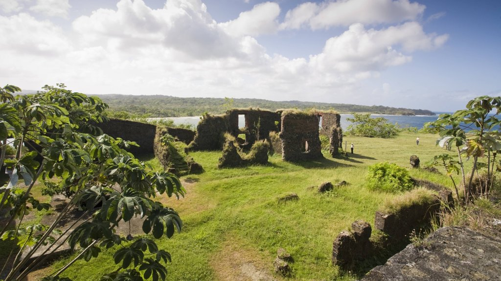 Colon showing a garden and building ruins