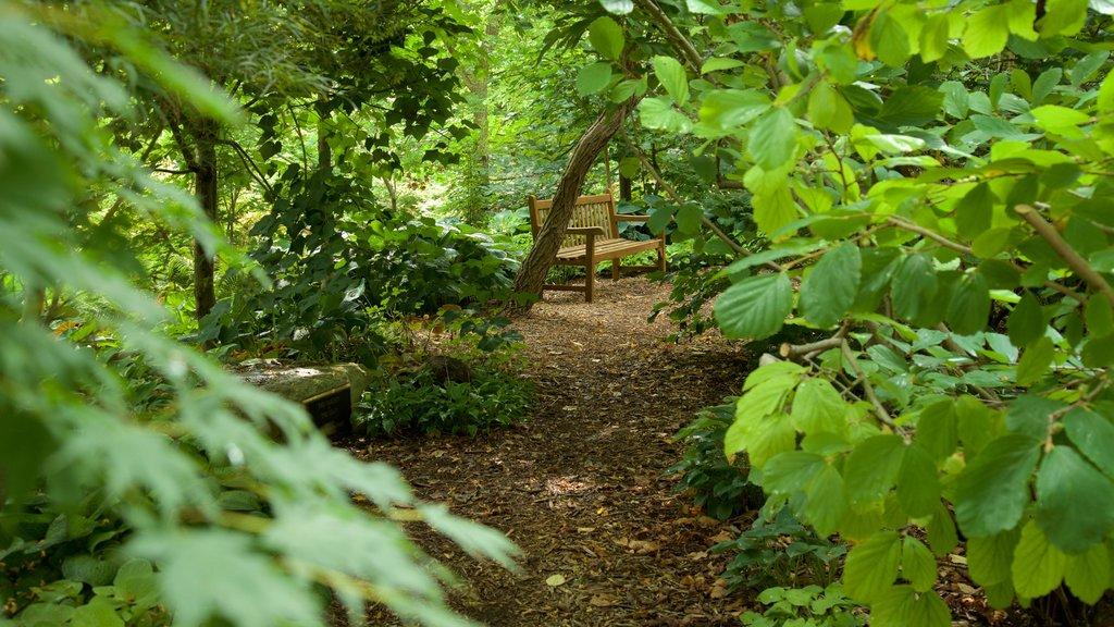 Lauritzen Gardens featuring a park