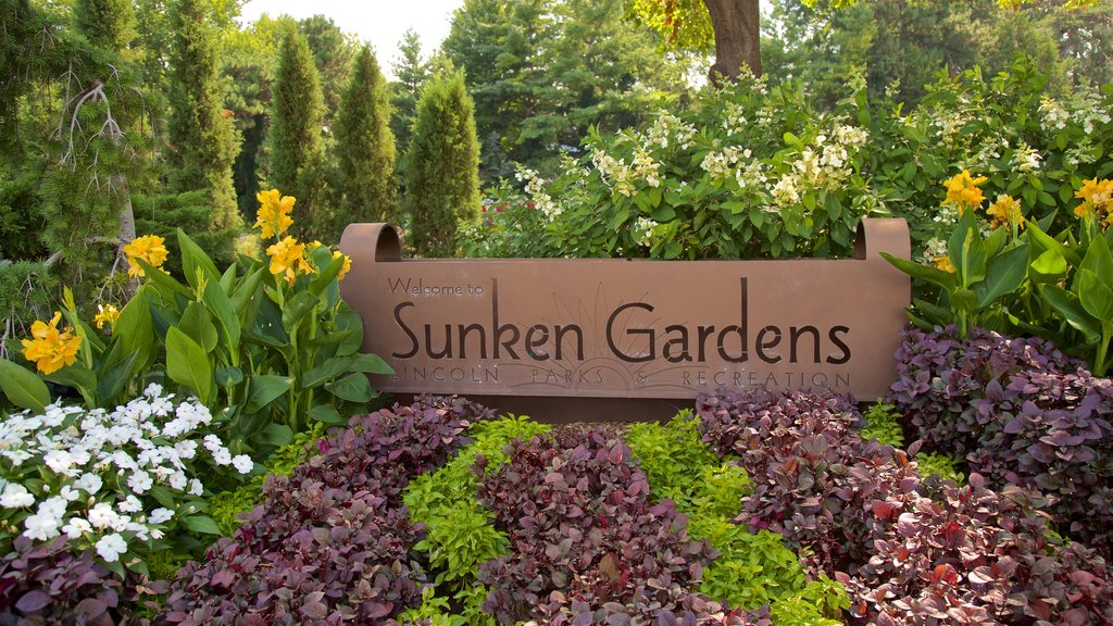 Sunken Gardens featuring flowers, signage and a garden