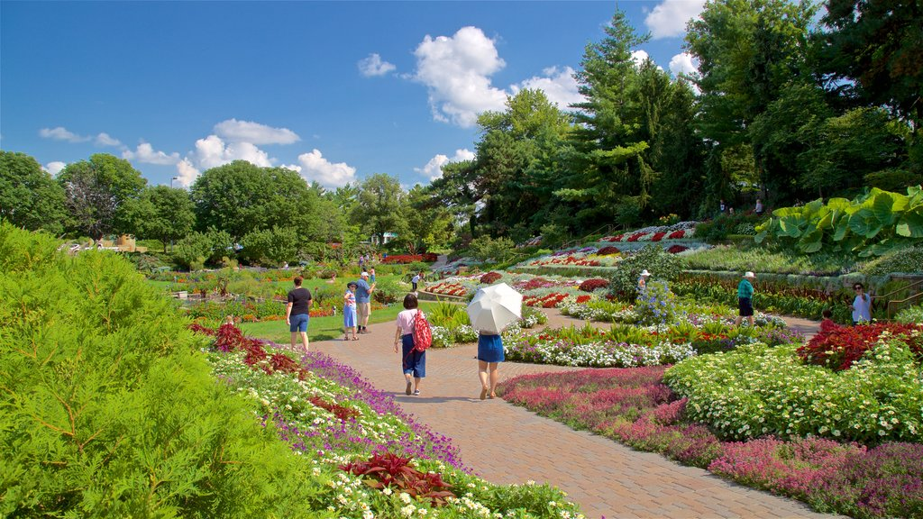 Sunken Gardens which includes a park, flowers and wildflowers