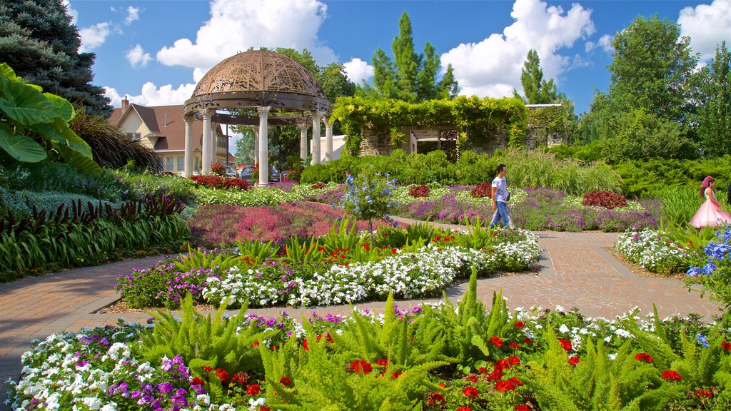 Sunken Gardens showing flowers, wildflowers and a park