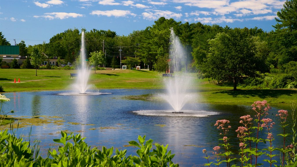 Scarborough showing a fountain and a lake or waterhole