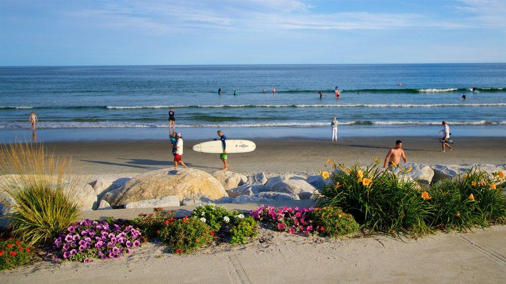 Higgins Beach which includes a beach, wildflowers and general coastal views