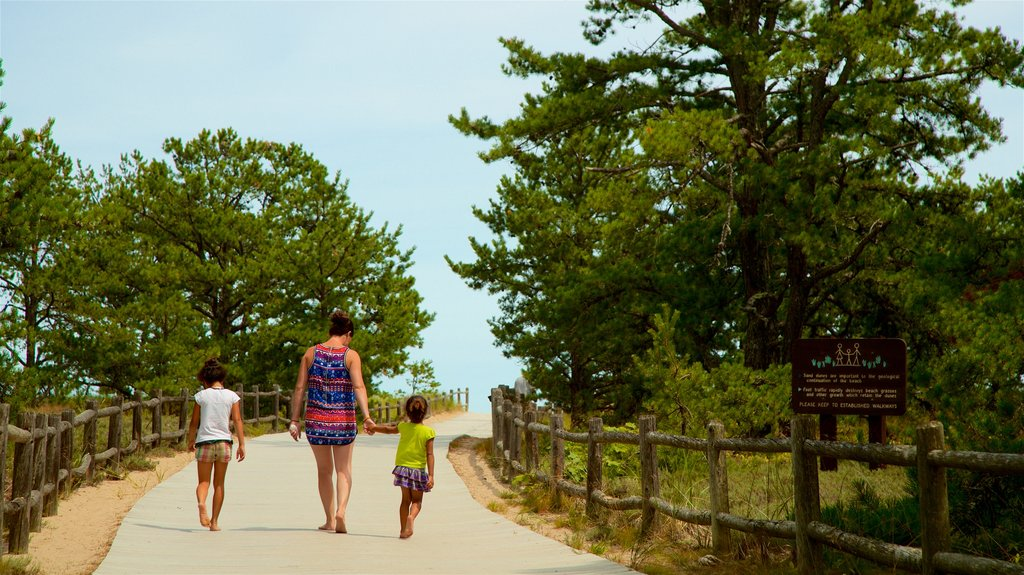Ferry Beach State Park showing general coastal views as well as a family