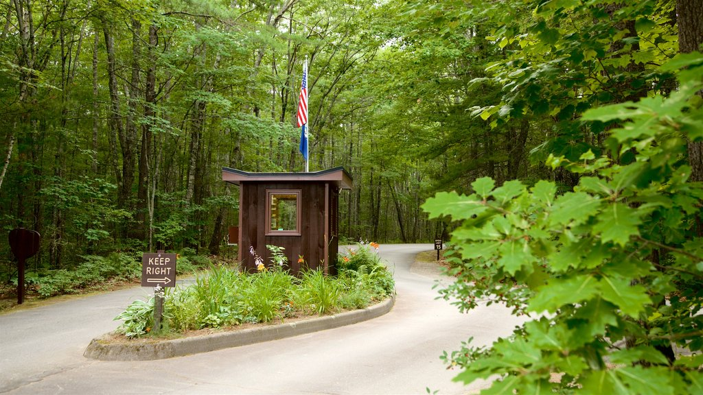 Ferry Beach State Park featuring forest scenes and a garden